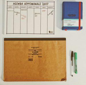 organizzazione 2017